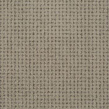 Big Time Pattern Carpet Drizzle Color