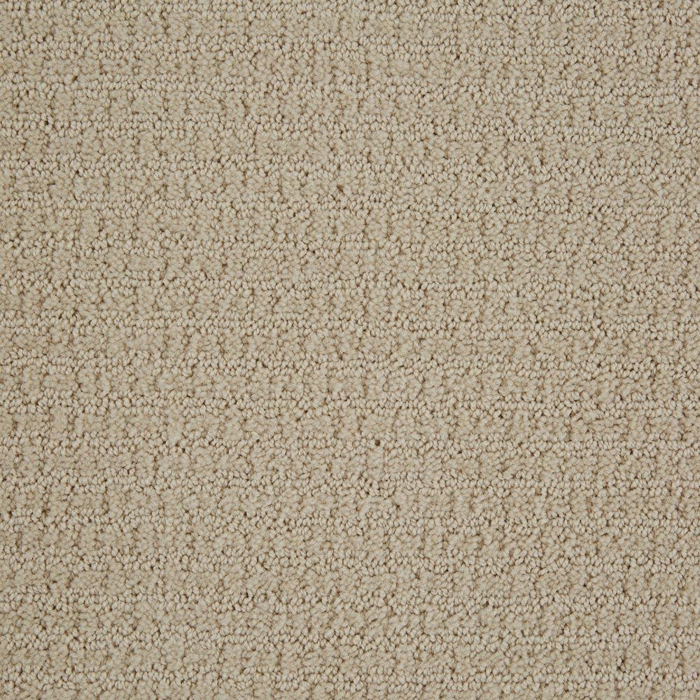 Envision Canvas Carpet