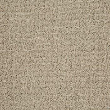 Envision Pattern Carpet Canvas Color