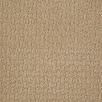 Envision Pattern Carpet Dunes Color