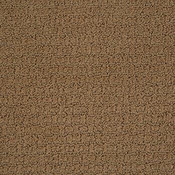 Envision Pattern Carpet Travertine Color