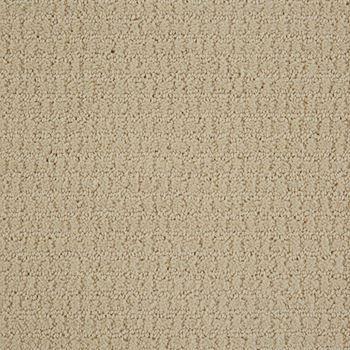 Envision Pattern Carpet Winter White Color