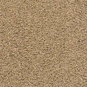 Making Waves Plush Carpet Excursion Color
