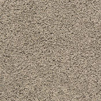Mix It Up Plush Carpet Flawless Color