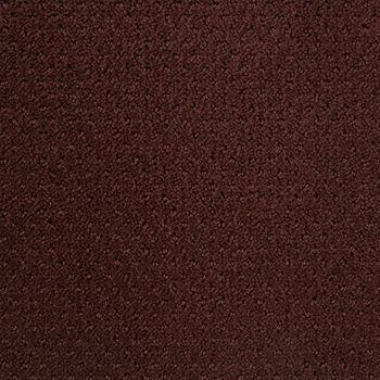 Motivate Pattern Carpet Berry Color