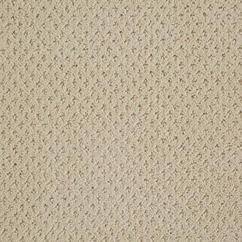 Motivate Pattern Carpet Canvas Color