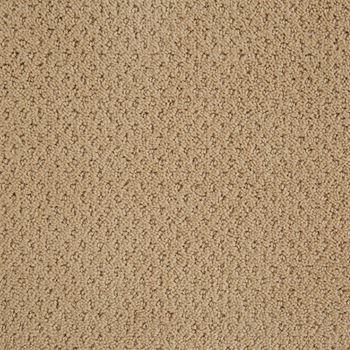 Motivate Pattern Carpet Dunes Color
