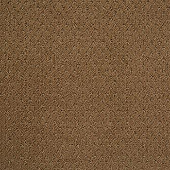 Motivate Pattern Carpet Travertine Color