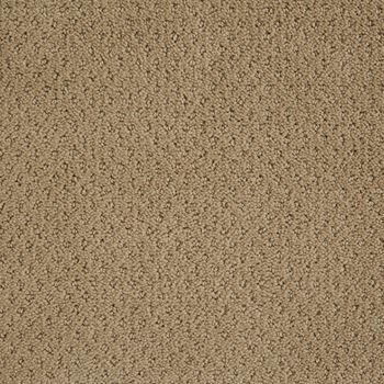 Motivate Pattern Carpet Wool Skein Color