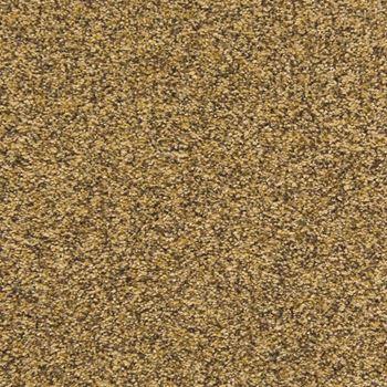 Visual Beauty Plush Carpet Exquisite Color
