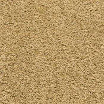 Pendleton Plush Carpet Flax Seed Color