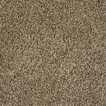 Sunny Isles Frieze Carpet Radiance Color