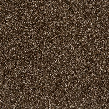 Sunny Isles Frieze Carpet Clockwork Color