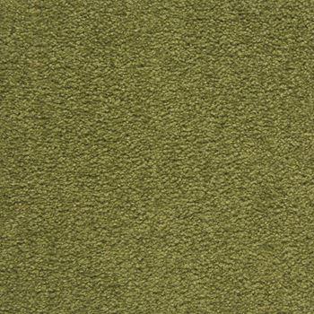 Royal Court Plush Carpet Kings Lawn Color