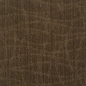 Symphony Pattern Carpet Urbana Color
