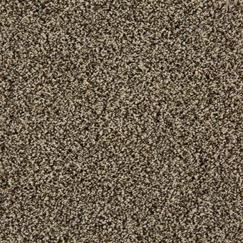 In The Know Plush Carpet Fox Trot Color