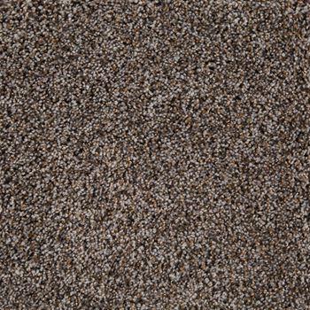 Glenora Frieze Carpet Calypso Color
