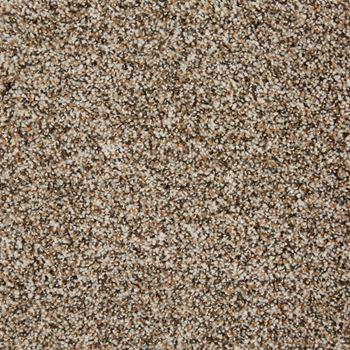 Glenora Frieze Carpet Magnolia Color