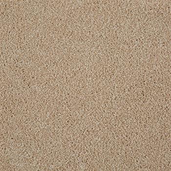 Parlor Plush Carpet Blush Color