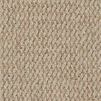 Name Game Berber Carpet Keep Away Color