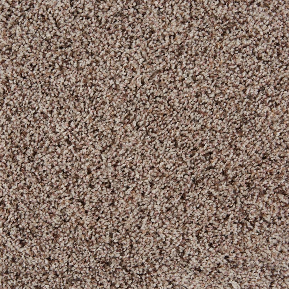 Sidekick Birch Desert Carpet