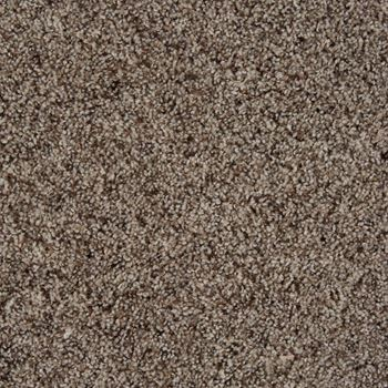 Sidekick Frieze Carpet Early Dawn Color