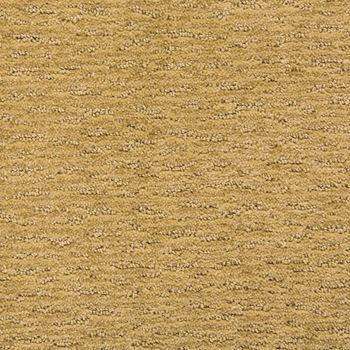 Avio Pattern Carpet Coffee Cream Color