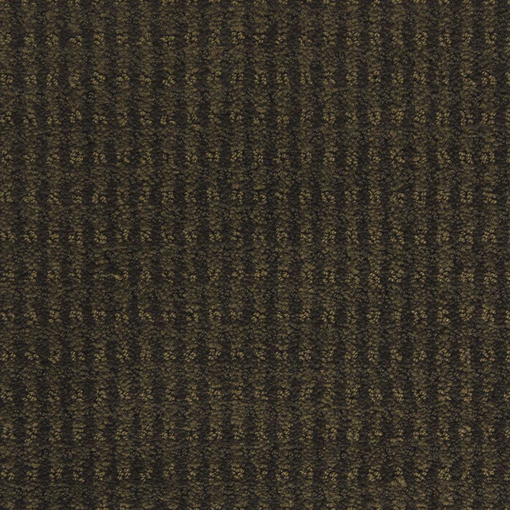 Dont Stop Believin Cilantro Carpet