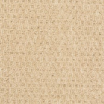 Burbur Carpet Ideas