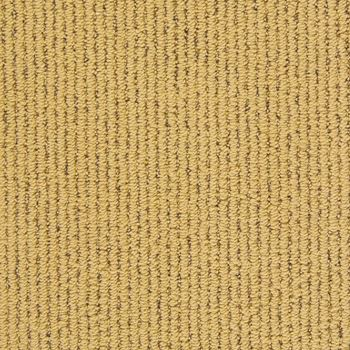 I Walk The Line Berber Carpet Gold Coast Color