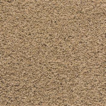 Mix It Up Plush Carpet Amazing Grace Color