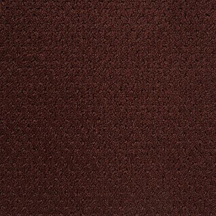 Motivate Pattern Carpet