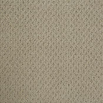Motivate Pattern Carpet Cold Water Color