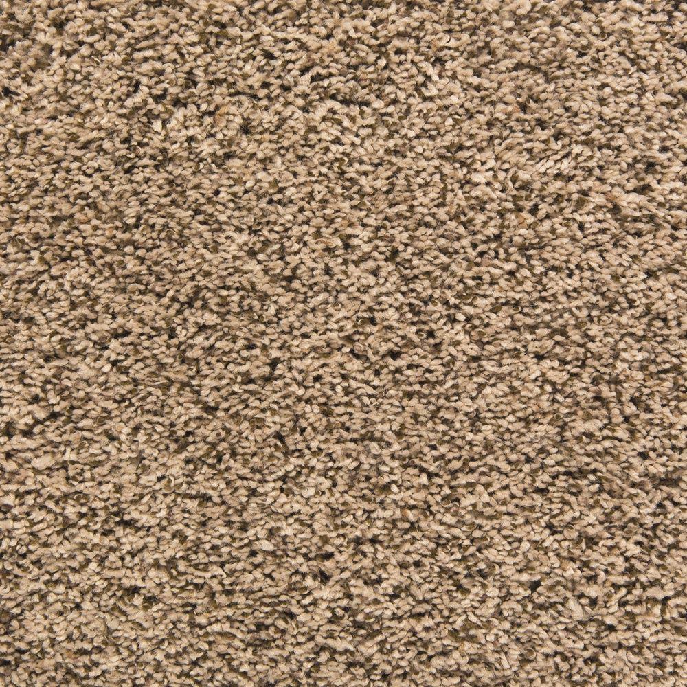 palmetto frieze carpet aruba color