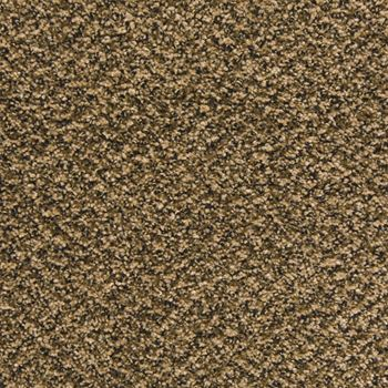Pavilion Frieze Carpet Cookies N Cream Color