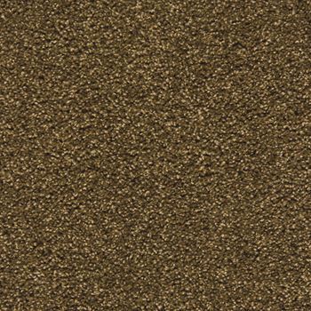 Pavilion Frieze Carpet Hot Fudge Color