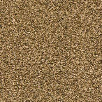 Pavilion Frieze Carpet Light Espresso Color
