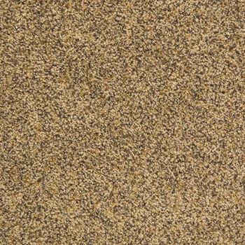 Visual Beauty Plush Carpet Glamour Color