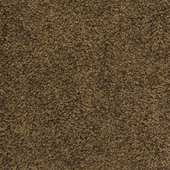 Pendleton Plush Carpet Dark Cocoa Color