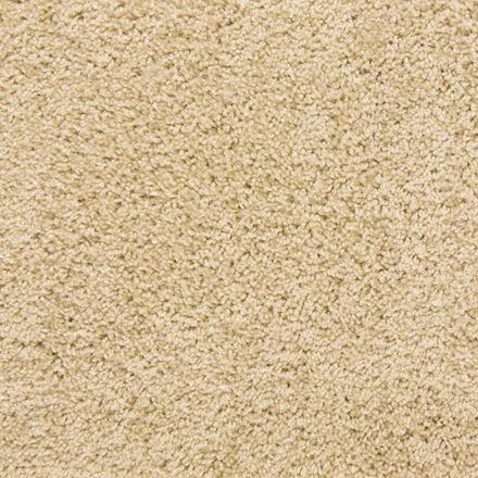 Nylon Plush Carpet Ideas
