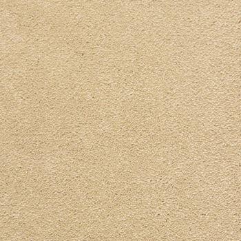 Primrose Lane Plush Carpet Blossom Color