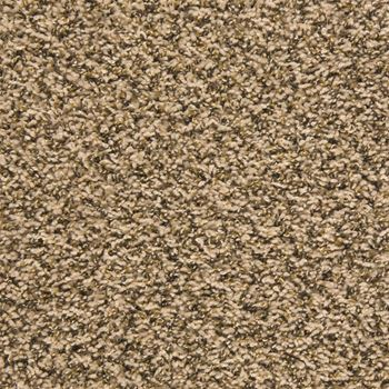 Pullman Frieze Carpet Oyster Bay Color