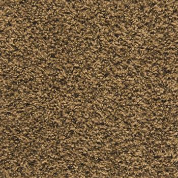 Pullman Frieze Carpet Sandalwood Color