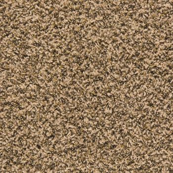 Pullman Frieze Carpet Vellum Color