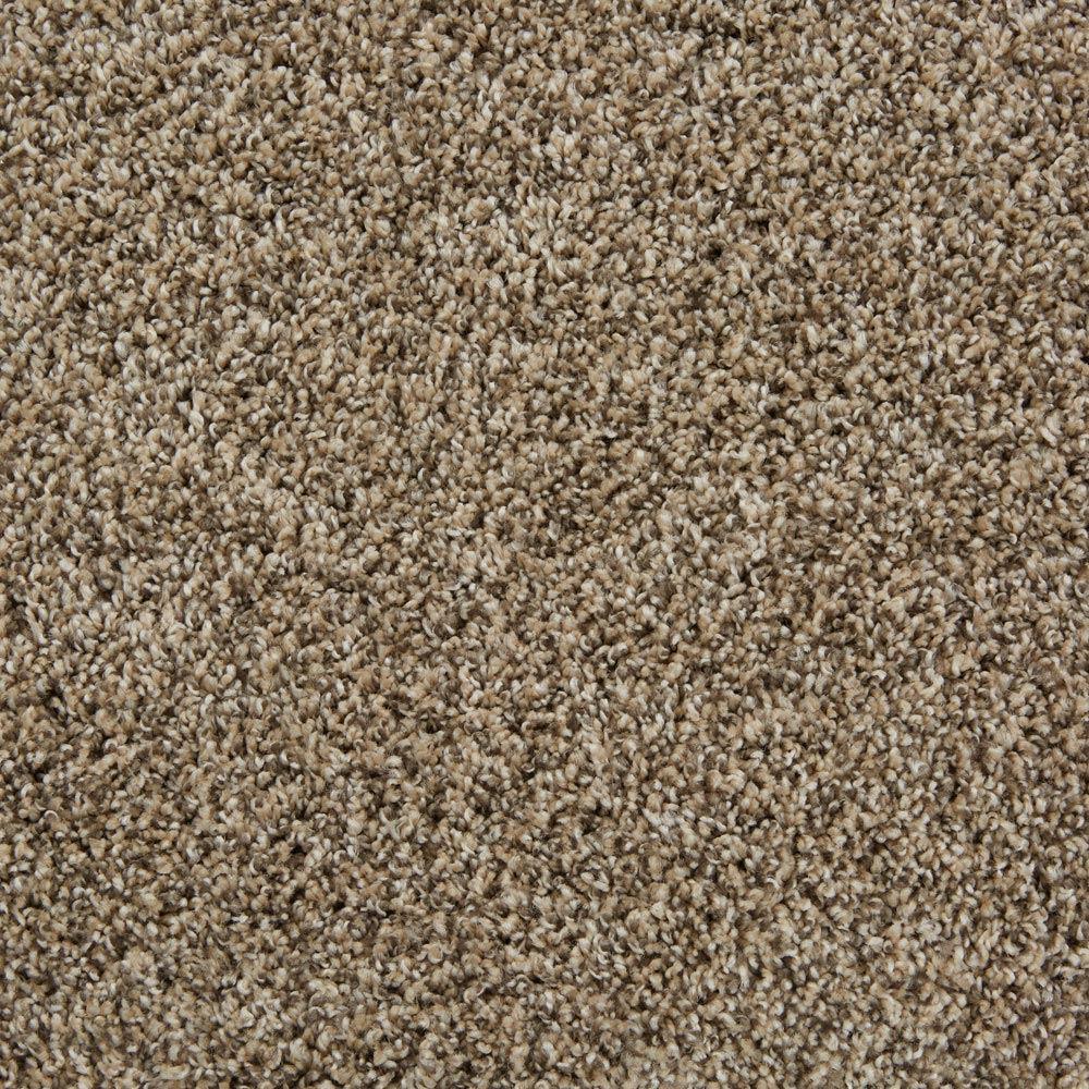 Sunny Isles Sephia Tan Carpet