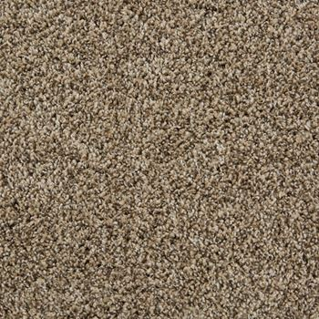 Sunny Isles Frieze Carpet Sephia Tan Color