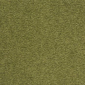 Royal Court Plush Carpet Kings Lawn Color