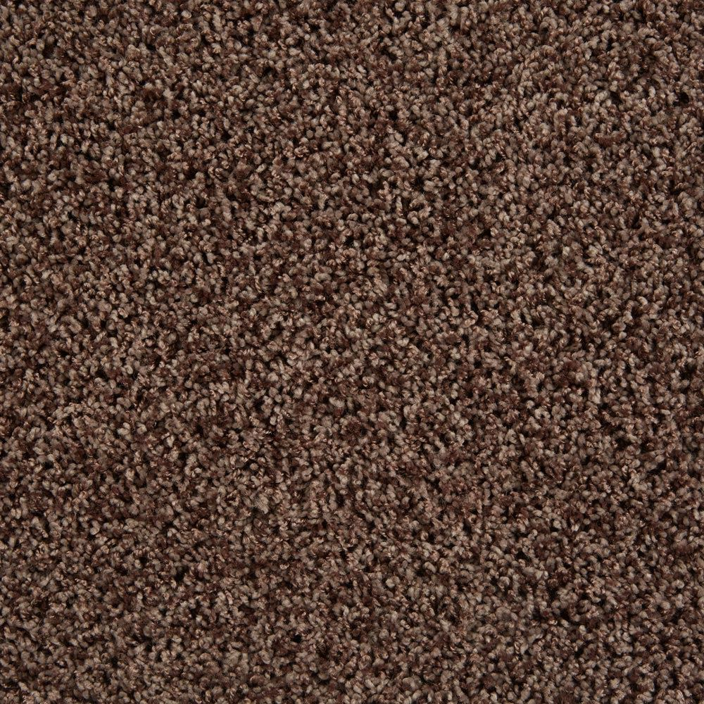 Shimmer Chocolate Pizzazz Carpet