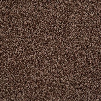 Shimmer Frieze Carpet Chocolate Pizzazz Color