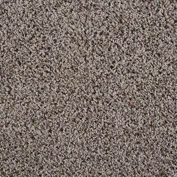 Shimmer Frieze Carpet Radical Topaz Color
